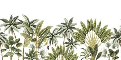 Fototapeta Tropical vintage botanical palm trees, banana tree floral seamless border white background. Exotic jungle wallpaper.