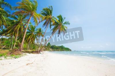 Fototapeta tropikalna plaża z palmy kokosowej i morze