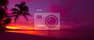 Fototapeta Tropikalna słońca z sylweta drzewa palmowego panoramy