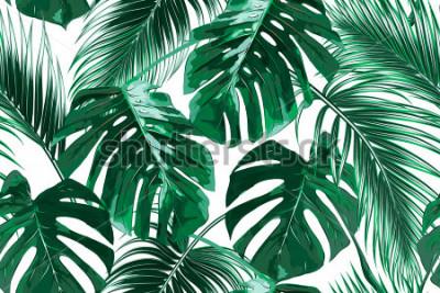 Fototapeta Tropikalne liście palmowe, dżungli pozostawia bez wzorów wektor kwiatowy wzór tła
