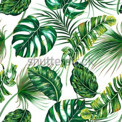 Fototapeta Tropikalne liście palmowe, monstera, dżungla liść wektor bezszwowe kwiatowy lato wzór tła