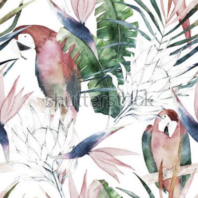 Fototapeta Tropikalny wzór z papugi, protea i liści. Letni wydruk w akwarela. Egzotyczna ręka rysująca ilustracja