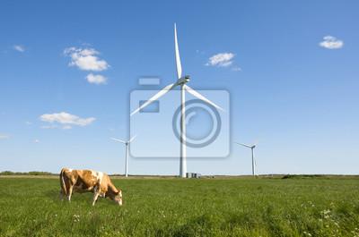 Fototapeta Turbina wiatrowa czyste zielona energia