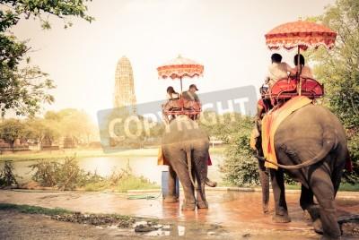 Fototapeta Turystów jedzie słonie w Ayutthaya, Tajlandia