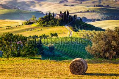 Fototapeta Tuscany, Italian Countryside, landscape