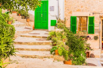 Fototapeta Typowy wystrój roślin na starym tamtejsze miejscowości śródziemnomorskiej