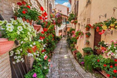 Fototapeta Ulica w małym miasteczku we Włoszech w słoneczny dzień, Umbria