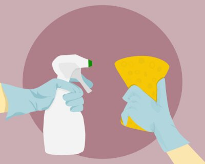 Fototapeta Vector of two hands. One is holding a yellow sponge and the other one is holding a cleaning liquid