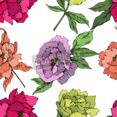Fototapeta Vector Peony floral botanical flower. Wild spring leaf wildflower isolated. Engraved ink art. Seamless background pattern. Fabric wallpaper print texture.