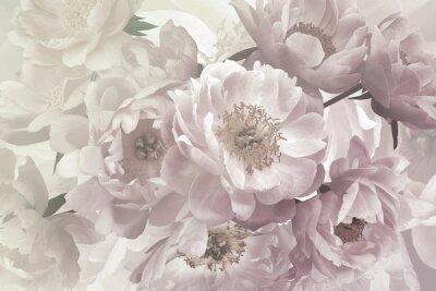 Fototapeta Vintage bouquet of beautiful garden flowers peonies. Pastel colors.