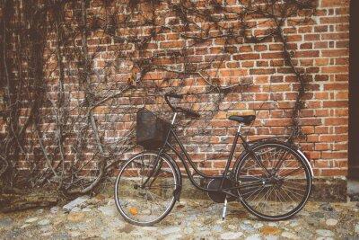 Fototapeta Vintage rower oparty na ścianie