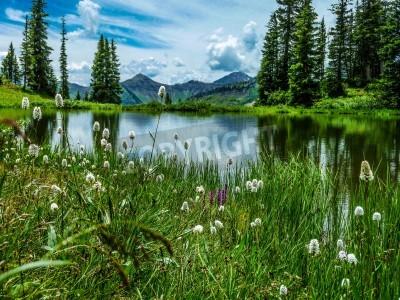 Fototapeta vista jeziora Paridise Zagłębia w Paridise Crested Butte Kolorado w pobliżu