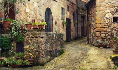Fototapeta Wąska ulica średniowiecznego miasta starożytnego tuf Sorano z zielonych roślin i kostki brukowej, podróże Włochy tło