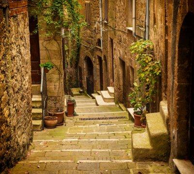 Fototapeta Wąska ulica średniowiecznych tuf miasta Pitigliano z zielonych roślin i brukowanymi schodami, podróże Włochy rocznika tle