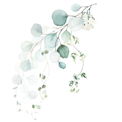 Fototapeta Watercolor floral illustration bouquet - green leaf branch collection, for wedding stationary, greetings, wallpapers, fashion, background. Eucalyptus, olive, green leaves, etc.
