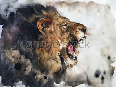 Fototapeta Watercolour painting of lion