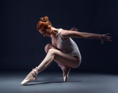 Fototapeta Wdzięku szczupła tancerka w studio