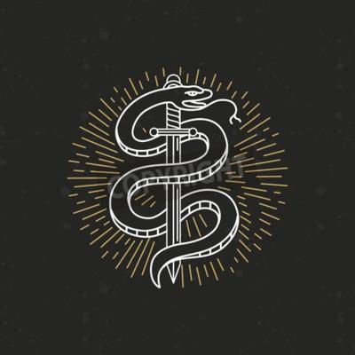 Fototapeta Wektor Rysunek Liniowy Monochromatyczny Tatuaż Wąż I Mieczem