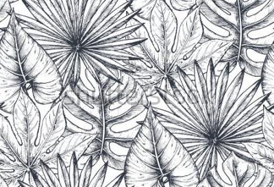 Fototapeta Wektor wzór z kompozycji ręcznie rysowane tropikalnych kwiatów, liści palmowych, roślin dżungli, rajski bukiet. Piękny czarny i biały kreślący kwiecisty niekończący się tło