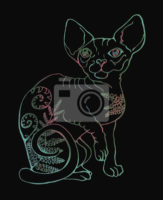 Wektorowa Ilustracja Kot Na Czarnym Tle Kolorowy Portret Kot