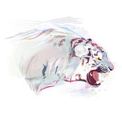 Fototapeta White Tiger, Akwarela Ilustracja