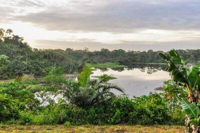 Fototapeta Widok na jezioro w Amazon Rainforest, Manaos, Brazylia