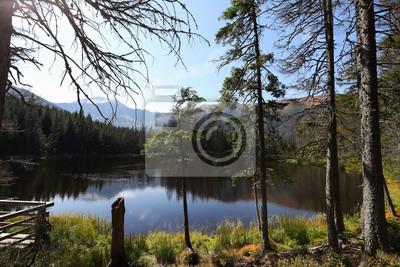 Fototapeta Widok na piękne górskie jezioro