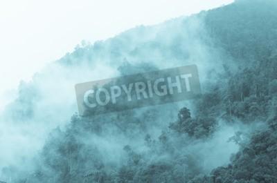 Fototapeta Widok z góry, który widać Mgła pokryta lasami górskimi