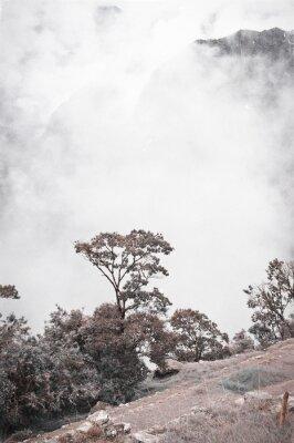 Fototapeta Widok Z Machu Picchu