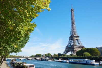 Fototapeta Wieża Eiffla i Sekwany Widok z zielonych gałęzi drzew, słoneczny