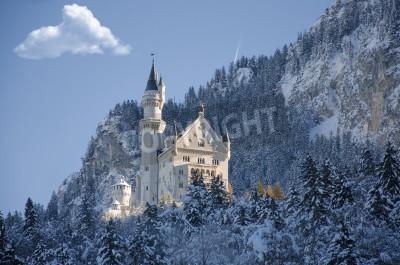 Fototapeta Winter view of Castle Fussen, Bavaria, Germany