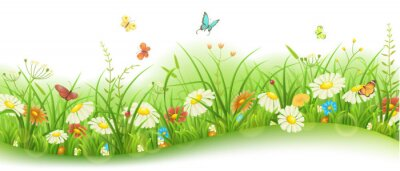 Fototapeta Wiosną i latem kwiatu transparentu z zielonych traw, kwiatów i motyli