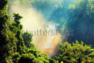 Fototapeta Wodospad ukryty w tropikalnej dżungli