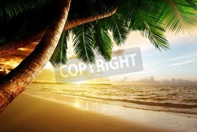 Fototapeta Wschód słońca na plaży Karaibów