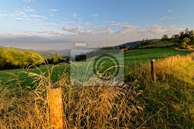Fototapeta Wschód słońca nad łąkami