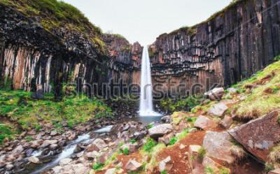 Fototapeta Wspaniały widok na wodospad Svartifoss. Dramatyczna i malownicza scena. Popularna atrakcja turystyczna. Icelandia, Europa