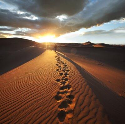 Fototapeta Wycieczka na pustynię