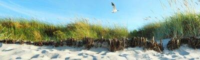 Fototapeta Wydmy na plaży - Panorama
