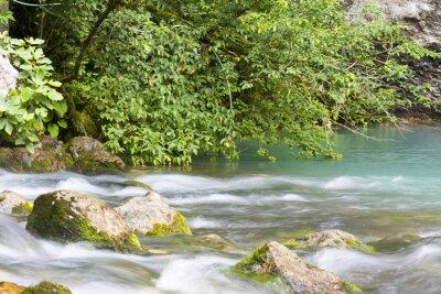 Fototapeta Река находится в горах Абхазии и впадает в голубое озеро.
