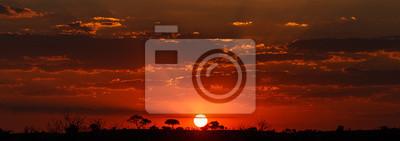 Fototapeta Zachód słońca - Chobe NP Botswana, Afryka