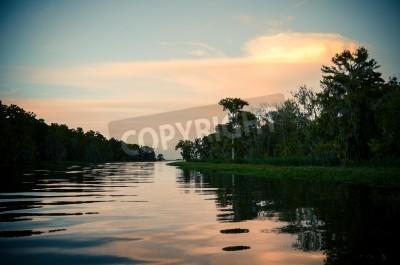 Fototapeta Zachód słońca nad bayou tle