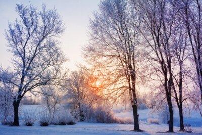 Fototapeta zachód słońca zima