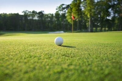 Fototapeta Zamknąć z piłeczka golfowa na zielonym