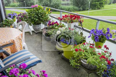 Zazielenienie Balkonu Balkonowy Ogrod Rosnace Kwiaty Na Balkonie