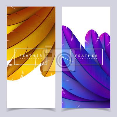 Zestaw Kolorowych Pior Transparenty Piekne Ptasie Piora Kompozycji