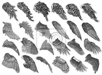 Fototapeta Zestaw Wyciągnąć Rękę Rocznika Wyryte Drzewo Anioła Lub Ptaka
