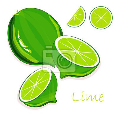 Fototapeta Zielone Limonki Zielone Korzenie Plastry Na Bialym Tle Rysunek