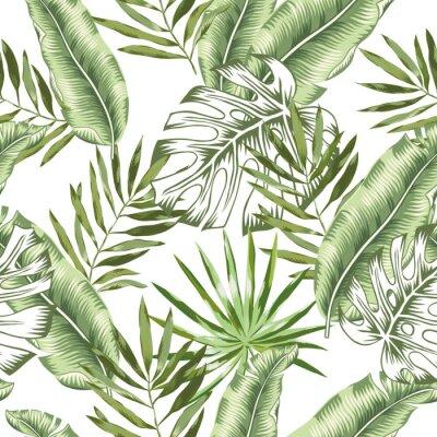 Fototapeta Zielony banan, monstera palma opuszcza z białym tłem. Wektorowy bezszwowy wzór. Ilustracja liści tropikalnej dżungli. Egzotyczne rośliny zieleni. Letnia plaża kwiatowy wzór. Rajska natura.