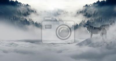 Fototapeta zima śnieg