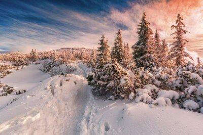 Fototapeta Zimowy zachód słońca na Beskidach